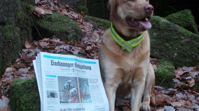 Online Stroh Backnanger-kreiszeitung